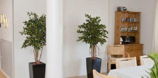 Kunstige planter til kontoret